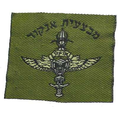 NÁŠIVKA Izrael ČP 37x48mm 752 Oliv