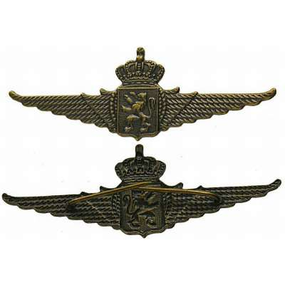 ODZNAK BELGIE 2.SV 600x22mm ČEPICOVÝ Belgian Royal Air Force Wings Cap Badge NCO MATNÝ